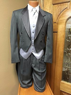 Grey Tail Coat Adjustable Pants Pinstripe Steampunk Cosplay Prom Firenze Dance