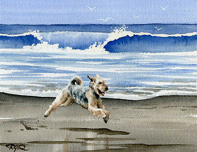 AIREDALE TERRIER Dog Watercolor 8 x 10 ART Print Signed DJR