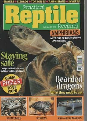 Practical Reptile Magazine  June 2014 No.62  Bearded Dragons    Ls