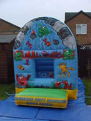 Fish Bouncy Castle/Ball Pond