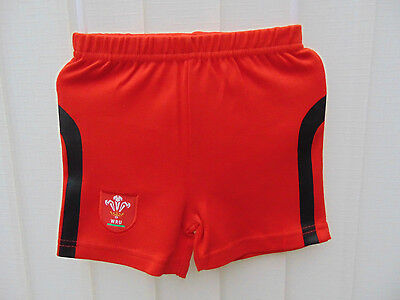 Welsh Rugby Baby Shorts age 3-6 Months