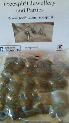 25 x aaa rated akoya oyster for home opening bulk buy