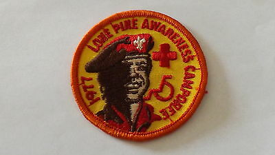 Boy Scout Patch Lone Pine Awareness 1977