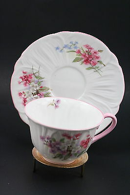 SHELLEY DAINTY STOCKS OLEANDER #13424 R Fine Bone China MADE IN ENGLAND Tea Cup