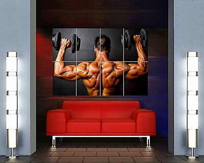 Bodybuilding Weight Lifting Gym Muscles New Giant Wall Art Print Poster Oz153