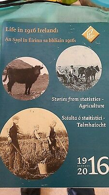 life in 1916 Ireland ..stories from statistics