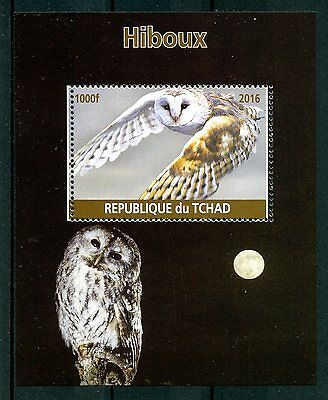 Chad 2016 MNH Owls 1v M/S Hiboux Birds of Prey Stamps