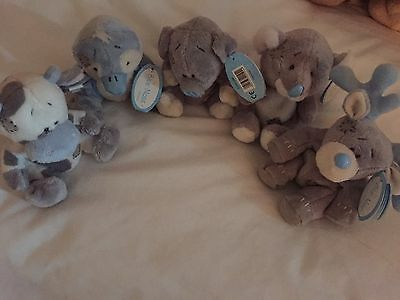 me to you blue nose Bears Collection.
