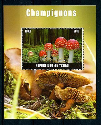 Chad 2016 MNH Mushrooms Fly Agaric 1v M/S Champignons Fungi Nature Stamps