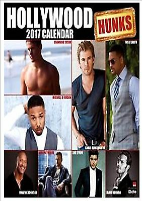Hollywood Hunks Calendar 2017 with free pull out planner NEW