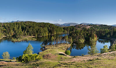 x110 Lake District Magnets: Tarn Hows
