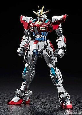 2015 Gundam docks in Hong Kong II Limited HG Try Burning Full Color Coating ver
