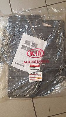 Complete Assy-All weather mat A4H13AQ005