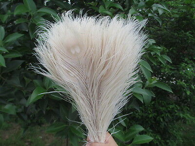 10pcs beautiful beige peacock feather eyes 10-12 inches wedding decorations