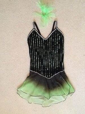 BN Jerry's Ombre Ice Figure Skating Dress or Dance Costume Free Shipping
