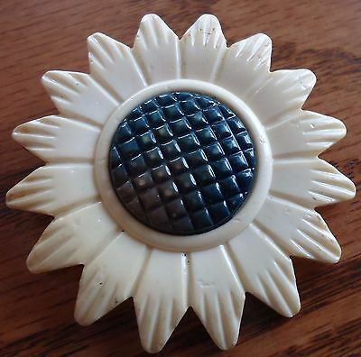 "Beautiful Celluloid Daisy Vintage Antique  Xl 1 1/2"" Picture Button"