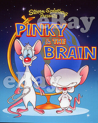 Rare! PINKY AND THE BRAIN Cartoon Color TV Photo WARNER BROS ANIMATION