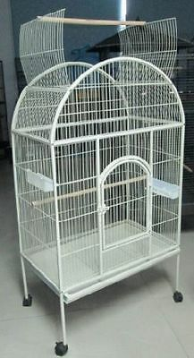 Large White Open-Top Parrot Cage for medium to large birds-