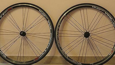 Ruote Most Wild Cat 3 wheel vintage campagnolo