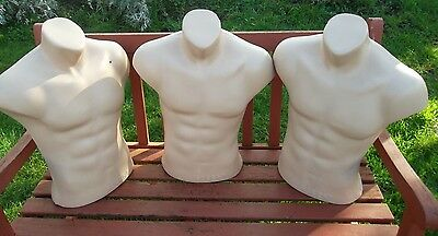 Plastic Male  Torso Body Form  Mannequin Display