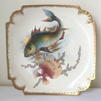 Antique Fish Plate With Hand Painted Fish Royal Bonn (?)