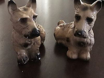 A Pair Of Plaster Scottish (?)Terrier Dogs Vintage