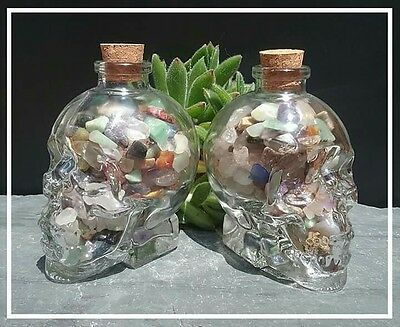 Glass skull Jar filled with mini chip stones