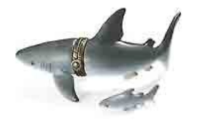 Shark PHB Porcelain Hinged Box Midwest of Cannon Falls
