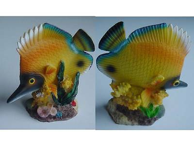 Fish Coral Ornament