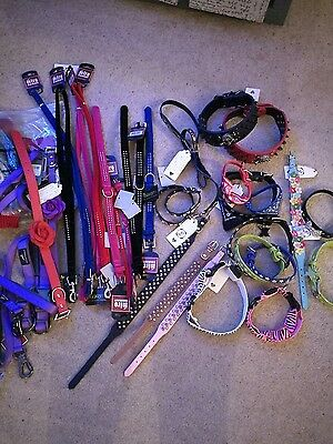 Job lot dog collars and accesories over 90 items REDUCED