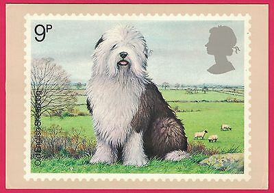1979 Scott #851 Old English Sheep Dog PHQ Card First Day Of Issue FDI