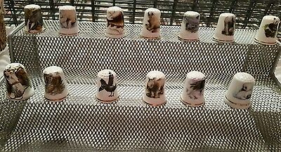 Thimbles 13 Animals