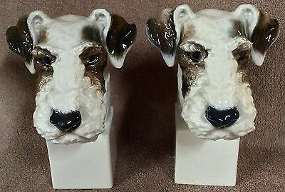 Large German porcelain Rosenthal Wire Fox Terrier Head Study - Lot FT3