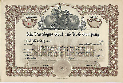 1910s THE PATCHOGUE COAL AND FEED COMPANY STOCK CERTIFICATE NEW YORK cancer bill