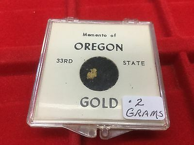 .2 Grams of Gold in small case From Oregon