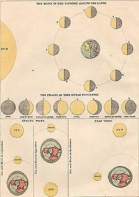 Map of  the Moon Around The Earth  1890s  Original Antique