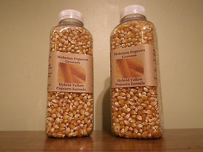 Mohnton Popcorn Growers Organic Yellow Popcorn  SALE! 2 FOR $10