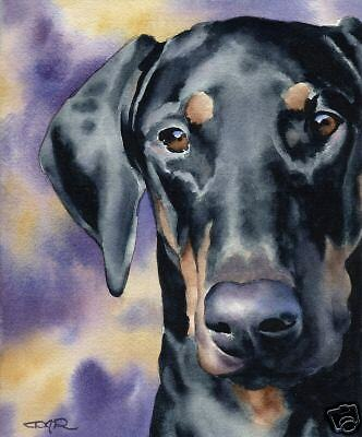 DOBERMAN PINSCHER Painting Dog 8 x 10 ART Print w/COA Signed by Artist DJR