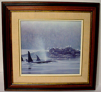 c A1 Vintage Framed 2 Whales Swimming In Water Seagulls On Island Picture Print