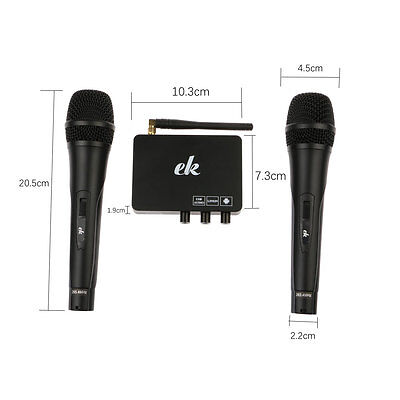 2 Wireless Mics Karaoke Machine Microphone Cordless Receiver for Meeting Party