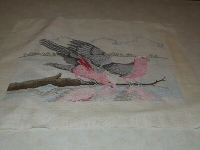 Completed Cross Stitch - Galahs