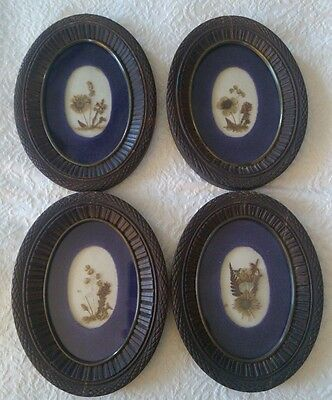 Antique Dried Botanical Flowers in Wood Carved Picture Frames (4) 1800's folkart