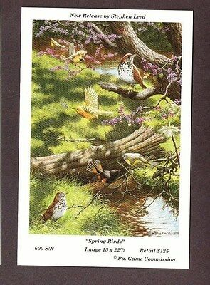 RARE Pa Pennsylvania Game Commission 1994 Spring Birds Lithograph Print Card