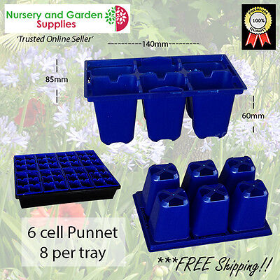 6 cell STD Plant Punnets blue X 50 seedling or cutting propagation