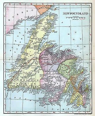 Newfoundland Canada Antique Color Detailed Map 1903 Wall Decor Original