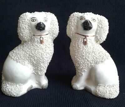 19th Century Pair of Staffordshire Dogs