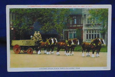Vintage Postcard - Curt Teich - Draft Horses 1927 International Exposition