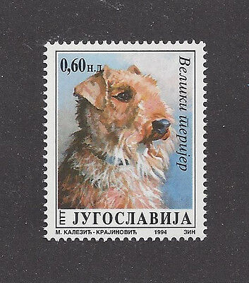 Dog Art Head Study Portrait Postage Stamp AIREDALE TERRIER Yugoslavia 1994 MNH