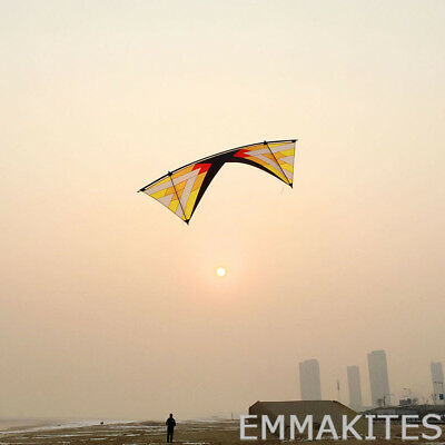 Professional Quad Line Stunt Kite for Beginners Competition Ventles to Vented