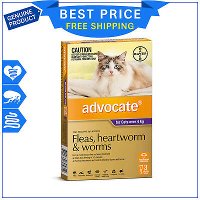 ADVOCATE for Cats Over 4 Kg Purple Pack 3 Pipettes flea heartworm worm treatment